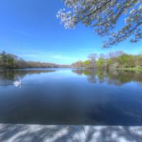 Robinsons Pond