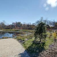 Swan River Preserve